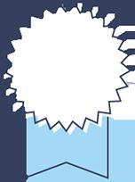Starburst certificate icon